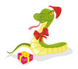 Snake with gift
