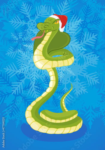 Snake on celebratory background