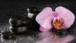 Spa stones and orchid flower, on wet grey background.