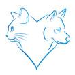 chat et chien en forme de coeur