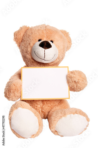 Teddy Bear with empty Sign