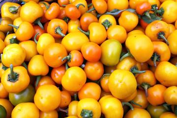 peperoncini gialli