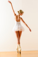 Beautiful ballet dancer dancing in the studio