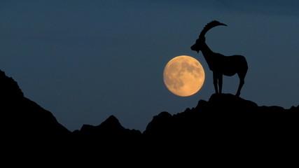Slovenia Triglav moonrise