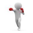 3d human - boxing