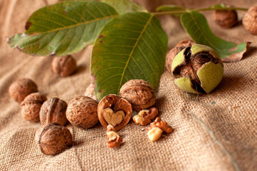Walnuts on table