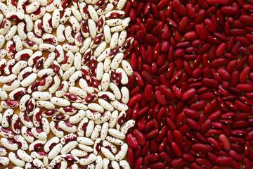 Soup Beans V