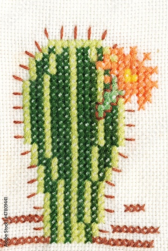 Cross-stitch embroidery of cactus with flower