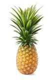 Fototapety pineapple