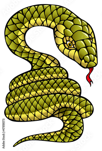 Snake, symbol of coming year, vector