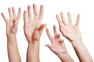 Vier Hände strecken sich nach oben