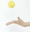 tennis ball throw up