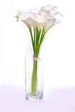 bouquet of calla lilies