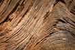 Leinwandbild Motiv Texture de bois