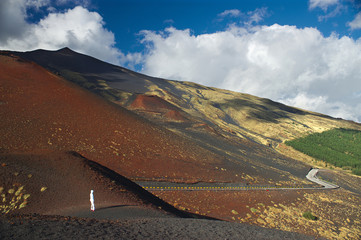 on the slope of the Etna,  Italy, Sicily