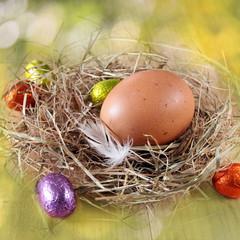 hühnerei und schokoeier im nest