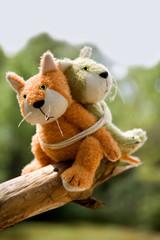 chatons en peluche attachés sur une branche