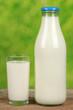 Frische Milch in der Milchflasche und in einem Glas