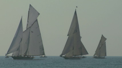 old sail regatta 14