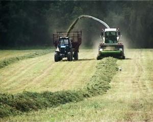 Механизированная заготовка сена в поле летом