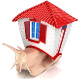 3D Snail with small house. Isolated.