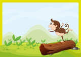 A monkey dancing on wood