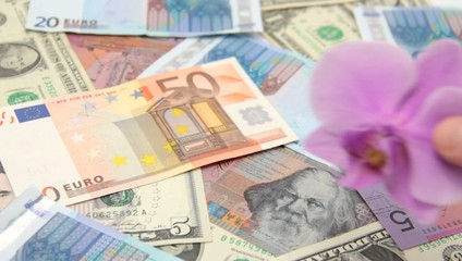 New economy concept. Paper money and orchid.