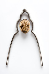 Walnut with Nutcracker on white Background