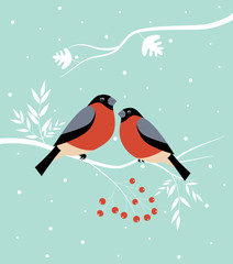 Two birds at  winter.