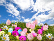 Bunte, fröhliche Osterwiese vor blauem Frühlings-Himmel