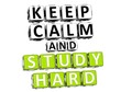 3D Keep Calm And Study Hard Button Click Here Block Text