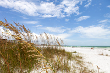 Siesta Key Beach Sarasota Florida