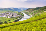 Fototapety famous Moselle Sinuosity with vineyards
