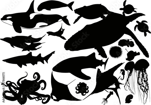 Aquatic animal silhouette collection