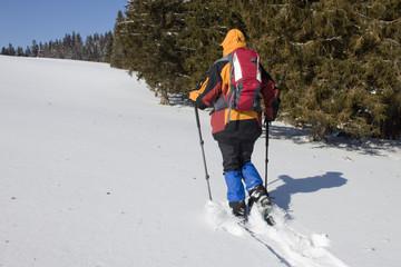 Schneeschuhwanderin  in jungfräulichem Schnee