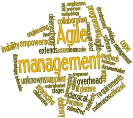 Word cloud for Agile management