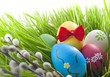 Easter eggs in green grass on meadow