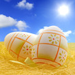 Easter eggs on meadow with sky abstract concept