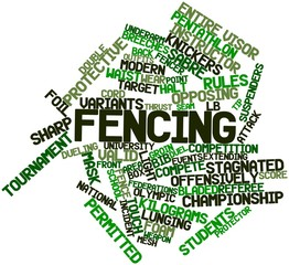 Word cloud for Fencing