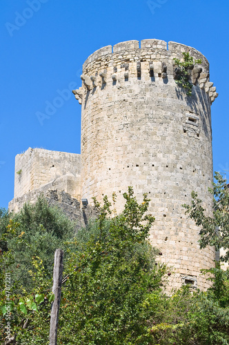 Tower of Matilde of Canossa. Tarquinia. Lazio. Italy.