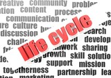 business word of life cycle
