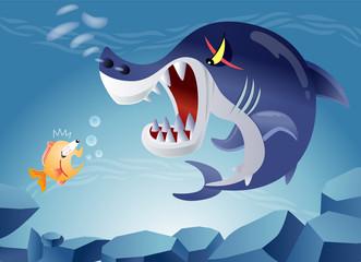 小魚を脅すサメ