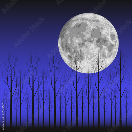 Moon and Tree - 47876472