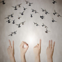 hand with 2013 number flying doves new year background