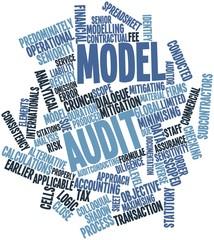 Word cloud for Model audit