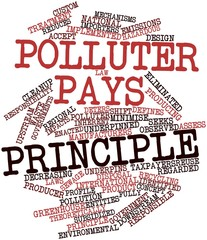 Word cloud for Polluter pays principle