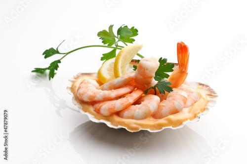 Gamberi rosa - Pink shrimp
