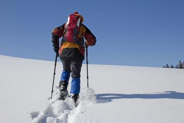 Schneeschuhwanderin zieht in jungfräulichem Schnee bergan.