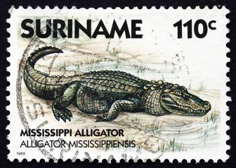 Postage stamp Suriname 1988 Mississippi Alligator, animal