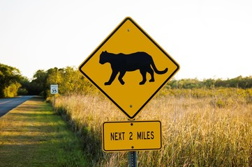 A Bobcat Warning Sign on a Road in Florida